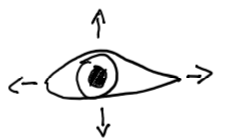 Illustration of peripheral vision